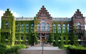 Yeosu University