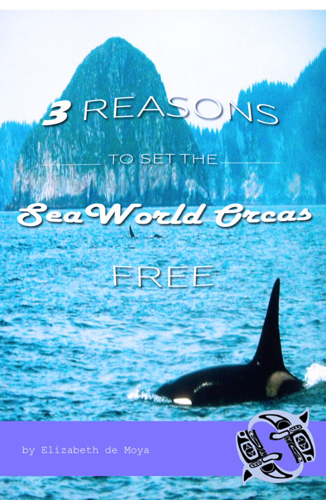 3 reasons to set the seaworld orcas free
